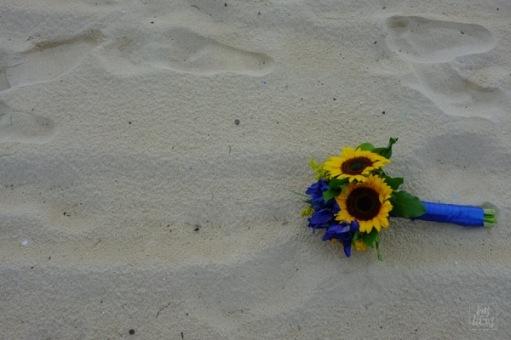 Sandflowers